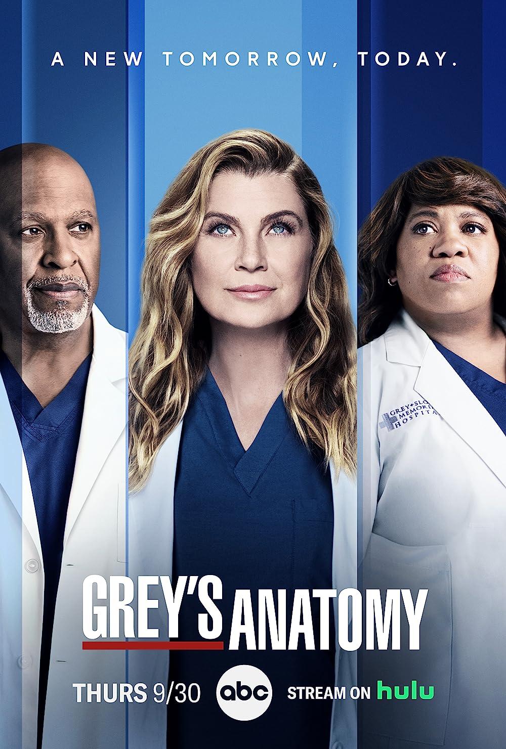 Wer Streamt GreyS Anatomy